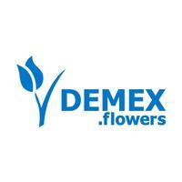 DEMEX flowers