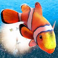 My Sea Fish Adventure | Free Fish Swimming Game 3D