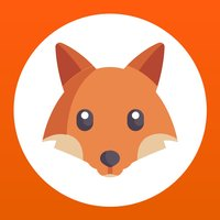 Fox Search - logic game