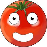 StiChara Vegetable
