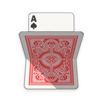 Salami Card Game