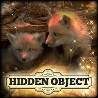 Hidden Object: Little Lovebugs
