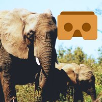 360 VR Elephant - Nature VR Apps for Kids