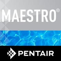 Maestro Pool