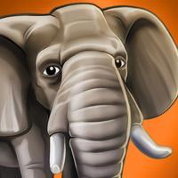 WildLife Africa - My reserve