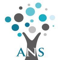 Al-Arabia National Schools