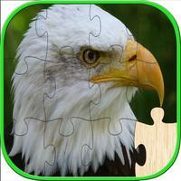 Birds Jigsaw Puzzles For Kids