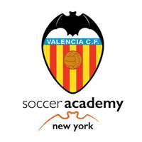Valencia CF Academy NY