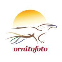 Ornitofoto