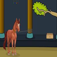 170 Foal Rescue