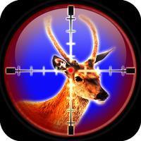 Deer Shooting Season: Buck Animal Safari Hunting Tournament Challenge