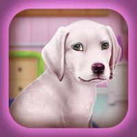 Labrador Puppy Day Care