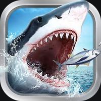 全民钓鱼3D:真实海钓王者手游