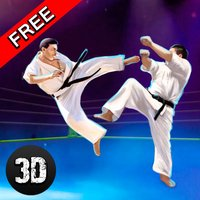 Karate Do Fighting Tiger 3D - 2