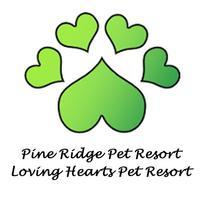 Pine Ridge-Loving Hearts PR.