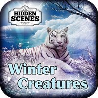 Hidden Scenes - Winter Creatures