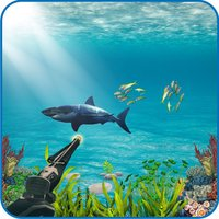 Shark Hunting Adventure