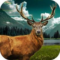 Jungle Deer Shooting Challenge