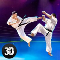 Karate Do Fighting Tiger 3D - 2 Full