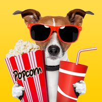 Trailer BOX! 2000 Top Movie Trailers for IMDB fans