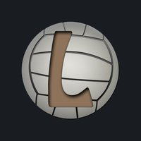 League For Volleyball