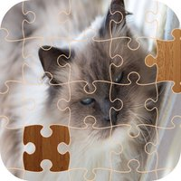 Cat Jigsaw Puzzle - Animal