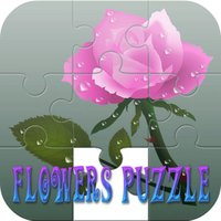 Cordial Flower Girl Puzzle Games