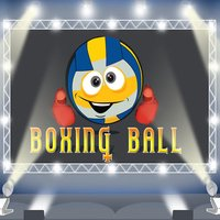 Boxing Ball: SunArc Studios