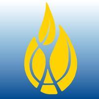 Wayland Baptist Univ Guides