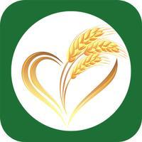 重庆农业种植(Agriculture)