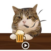 Molly The Cat Animated