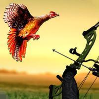 Pheasant Bow Hunting Safari