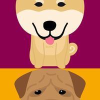Kindy Dog