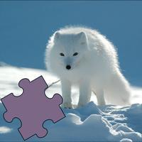 Animals Best Puzzle