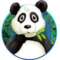 Panda Jump: Panda must jump