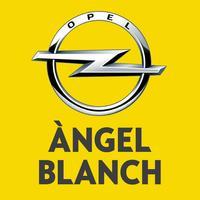 Àngel Blanch S.A.