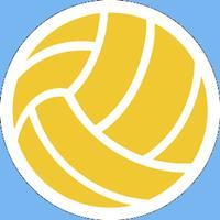 Multiplayer Volleyball