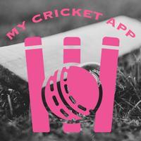 My Cricket App-Local Tournment