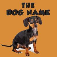 The Dog Name English Vocabulary