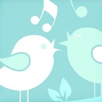 Brazilian bird's singing