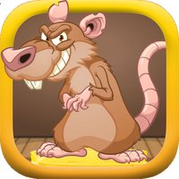 Trap The Mouse: Escape The Mayhem