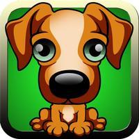 Dogs Training