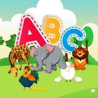 Animal Flashcards Game