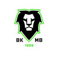 BK Boleslav