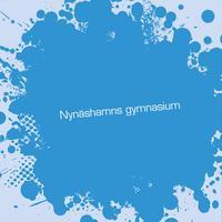Nynäshamns gymnasium