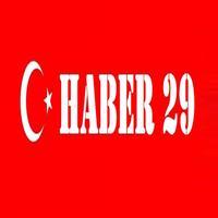 Haber 29
