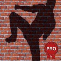 Karate Combo Fighting Workout Challenge PRO