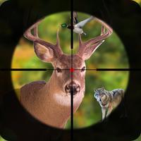 Jungle Hunting - Hunter Sniper