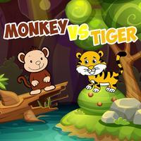 Monkey Jump vs Tiger Curious