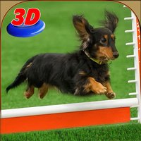 Dog Show Simulator 3D: Train puppies & perform amazing stunts